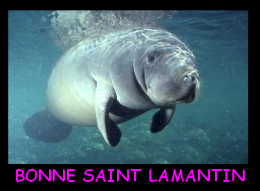 saintlamantin01